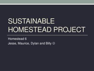 Sustainable Homestead project