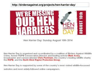 birdersagainst/projects/hen-harrier-day/