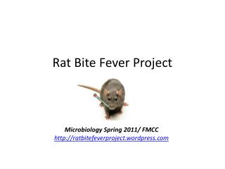 Rat Bite Fever Project
