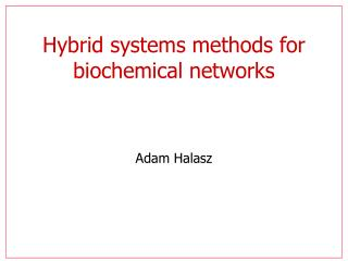 Hybrid systems methods for biochemical networks