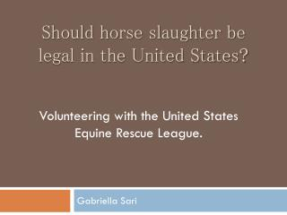 Should horse slaughter be legal in the United States?