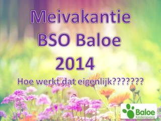 Meivakantie      BSO  Baloe          2014 Hoe  werkt dat eigenlijk ???????