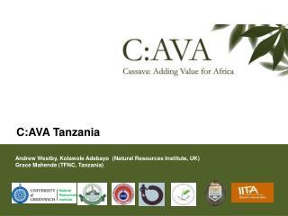 C:AVA Tanzania