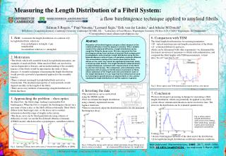 Measuring the Length Distribution of a Fibril System: