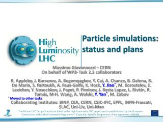 Particle simulations: status and plans
