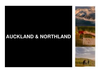 AUCKLAND & NORTHLAND