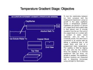 Temperature Gradient Stage: Objective