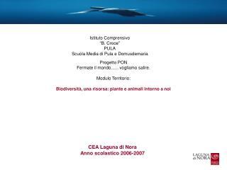 CEA Laguna di Nora  Anno scolastico 2006-2007