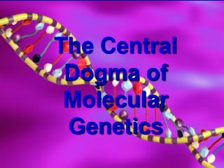 The Central Dogma of Molecular Genetics