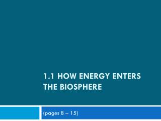 1.1 How Energy Enters the Biosphere