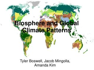 Biosphere and Global Climate Patterns