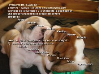 """""""  Problema De la Especie  """":"""