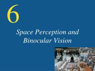 Space Perception and Binocular Vision
