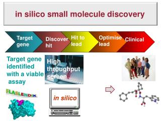 in  silico  small molecule discovery