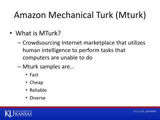 Amazon Mechanical Turk ( Mturk )