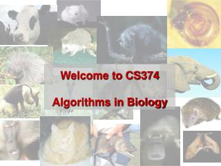 Welcome to CS374 Algorithms in Biology