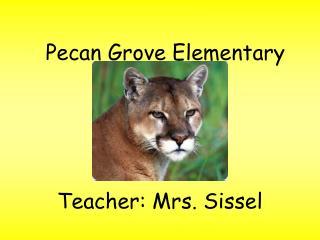 Pecan Grove Elementary