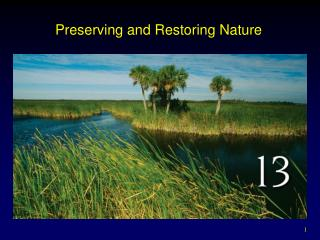 Preserving and Restoring Nature