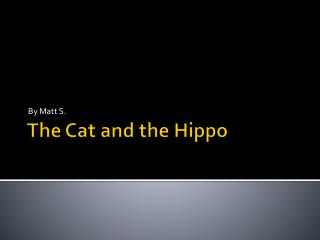 The Cat  and the Hippo