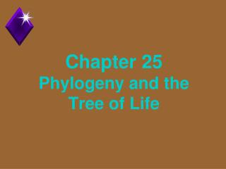 Chapter 25 Phylogeny and the Tree of Life