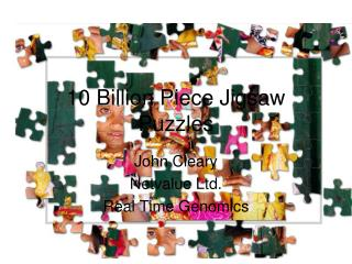 10 Billion Piece Jigsaw Puzzles