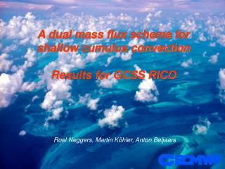 A dual mass flux scheme for  shallow cumulus convection Results for GCSS RICO