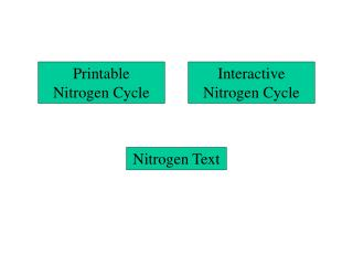 Interactive Nitrogen Cycle