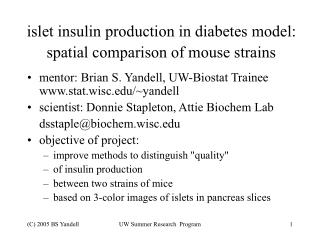 islet insulin production in diabetes model: spatial comparison of mouse strains