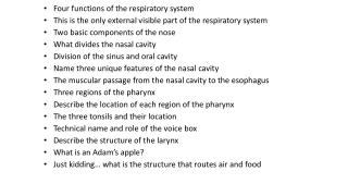 Four functions of the respiratory system
