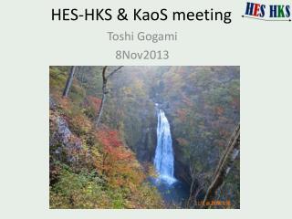 HES-HKS &  KaoS  meetin g