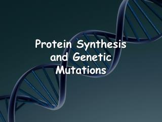 Protein Synthesis and Genetic Mutations