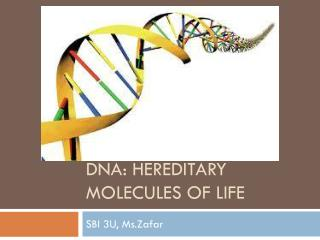 Dna : Hereditary molecules of life