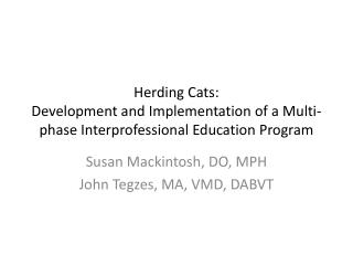 Herding Cats: Development and Implementation of a Multi-phase Interprofessional Education Program