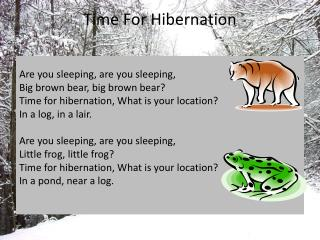 Time For Hibernation