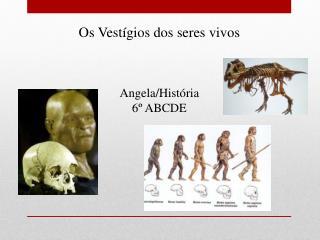 Os Vestígios dos seres vivos Angela /História 6º ABCDE