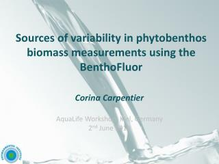 Sources of variability in phytobenthos biomass measurements  using the BenthoFluor