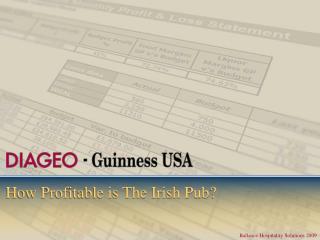How Profitable is The Irish Pub?