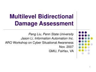 Multilevel Bidirectional Damage Assessment