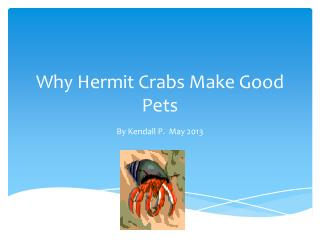 Why Hermit Crabs Make Good Pets
