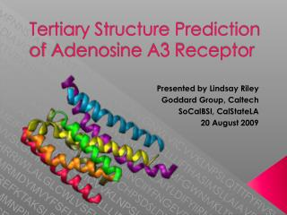 Tertiary Structure Prediction of Adenosine A3 Receptor