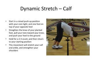 Dynamic Stretch � Calf