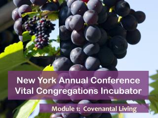 New York Annual Conference Vital Congregations Incubator