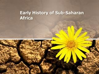 Early History of Sub-Saharan Africa