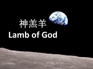 神羔羊 Lamb of God