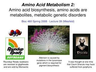 Amino Acid Metabolism 2: Amino acid biosynthesis, amino acids are metabolites, metabolic genetic disorders
