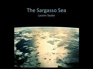 The Sargasso Sea Lauren Seyler