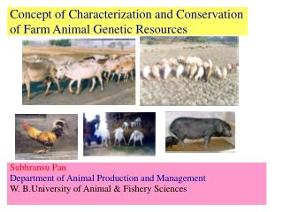 Concept of Characterization and Conservation of Farm Animal Genetic Resources
