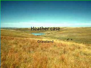 Heather case