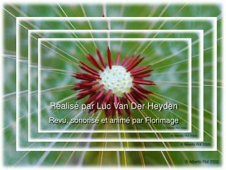 Réalisé par Luc Van Der Heyden Revu, sonorisé et animé par Florimage