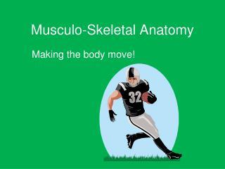 Musculo-Skeletal Anatomy